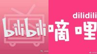 Dilidili bilibili chinese video platform