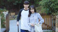 Zhang Heng dan Zheng Shuang Dikabarkan Berebut Hak Asuh Anak