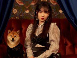 Agensi SNH48 Tuntut Majalah BEATXL Usai Undang Zhao Jiamin untuk Pemotretan