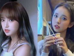 Cheng Chen Adik Cheng Xiao Dikabarkan Dikontrak oleh Yuehua Entertainment