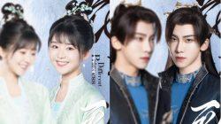 song yiran ding zeren drama different princess