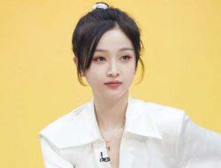 Netizen Dibuat Muak dengan Beberapa Pernyataan Wu Xuanyi