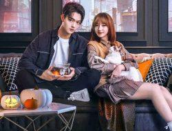 Drama Xu Kai dan Cheng Xiao 'Falling Into Your Smile' Dapat Rating Anjlok