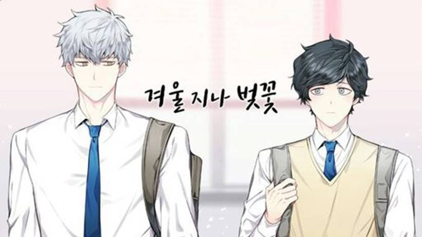 cherry blossoms after winter manhwa