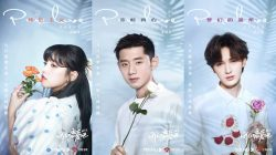 Let's Fall In Love Youku Reality Show