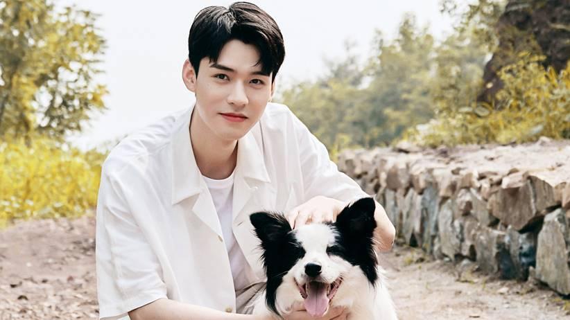 gong jun and dog